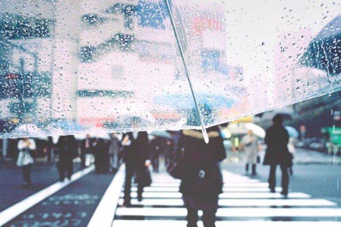 大雨冲刷日夜思念