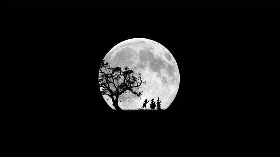 图片[1]-若化身古树,忍百年风吹,可否换你一次回眸。-墨吻博客